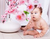 cute baby boy at home on the floor with a vase with flowers