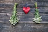 Red Heart And Medical Plant Achillea Millefolium Yarrow Common Herb Bunch On Wall