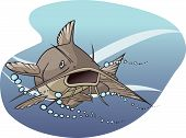 foto of catfish  - An illustrated catfish - JPG