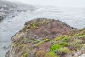 Spectacular Rock Formations at Point Lobos