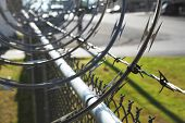 pic of bird fence  - Barbwire and razor sharp larger chunks of wire - JPG