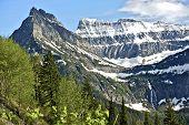 Montana's Glaciers