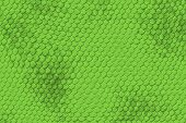 stock photo of lizard skin  - Lizard Skin Pattern  - JPG