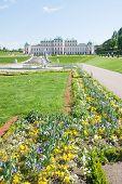 Belvedere Palace In Wien, Austria