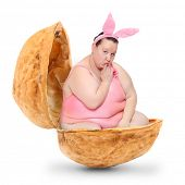 stock photo of xxl  - Cute bunny in the nutshell - JPG