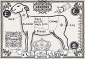 Cut Of Lamb On Vintage Page