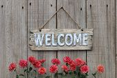 stock photo of red barn  - Wood welcome sign hanging on wooden fence with mum border - JPG