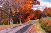 Cool Autumn Drive poster