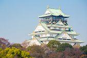 Osaka castle with autumn garden in Kansai Japan