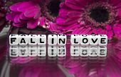 Fall In Love Message With Pink Big Flowers