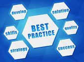 Best Practice And Business Concept Words In Hexagons