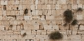 Stones of the western wall