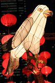 Chinese bird lantern for moon festival