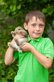 foto of rabbit year  - Little boy with a rabbit in his hands in the garden - JPG