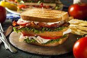 Turkey And Bacon Club Sandwich