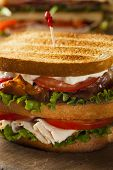 Turkey And Bacon Club Sandwich