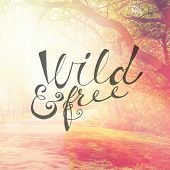 Inspirational Typographic Quote - wild & free