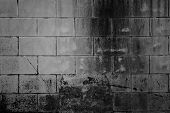 picture of cinder block  - Closeup of grey block wall - JPG