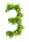 three digits of parsley
