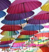 Artistic umbrellas