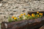 image of stonewalled  - Wooden handmade flowerpot and bench on stonewall background - JPG