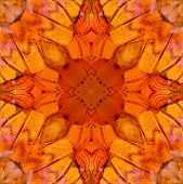 Nice Of Seamless Background Pattern Made Of Common Commander Butterfly Wing Skin