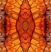 Nice Seamless Background Pattern Made Of Common Commander Butterfly Wing Skin