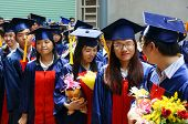 Graduate,  Young Human Resources