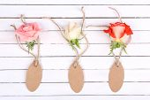 beautiful roses and empty tags on white wooden background
