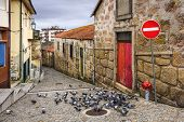Vila Nova de Gaia, Portugal alley scene with pigeons.