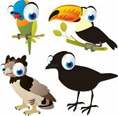 pic of toucan  - vector isolated cartoon cute animals set - JPG