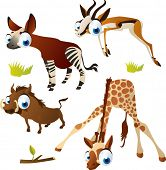 vector isolated cartoon cute animals set: safari ungulates: okapi, springbok, giraffe, warthog