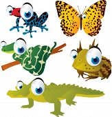 vector isolated cartoon cute animals set: frog, toad, alligator, butterfly, snake