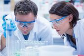 stock photo of chemistry technician  - Chemist team working with pipette and test tube in the laboratory - JPG