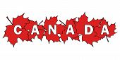 image of canada maple leaf  - word Canada written by letters cut out of red maple leaves - JPG