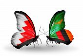 Two Butterflies With Flags On Wings As Symbol Of Relations Bahrain And Zambia