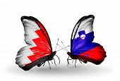 Two Butterflies With Flags On Wings As Symbol Of Relations Bahrain And Slovenia