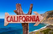 picture of bayou  - California wooden sign with Big Sur on background - JPG