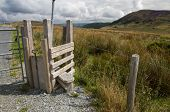 picture of cattle dog  - Step Stile style with gate for dog by gate Snowdonia National Park Gwynedd Wales United kingdom - JPG