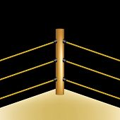 picture of boxing ring  - Boxing ring with brown ropes on black background - JPG