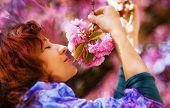 picture of lilas  - Beautiful Girl with flowers Spring Magic - JPG