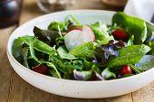 pic of salt-bowl  - Fresh leafy salad by big bowl of salad and sea salt  - JPG