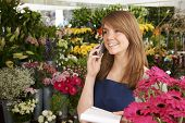 image of over counter  - Florist In Shop Taking Order Over The Phone In Shop - JPG