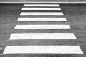 image of pedestrian crossing  - Pedestrian crossing road marking white rectangles over gray asphalt pavement perspective view with shallow DOF - JPG