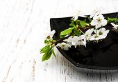 image of black-cherry  - white branch cherry blossom in black bowl on a wooden background - JPG