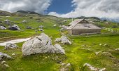 image of velika  - Velika Planina hill is a tourist attraction and destination, Slovenia