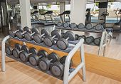pic of health center  - Row of dumbell weights on a rack in luxury health center gym - JPG