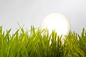stock photo of efficiencies  - Energy efficient lightbulb on field Environment and ecology conceptual image - JPG
