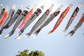 image of flogging  - Japanese carp kite streamer decoration against blue sky - JPG