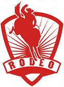 foto of bronco  - retro style illustration of an American Rodeo Cowboy riding a bucking bronco horse jumping with sunburst in shield background and scroll with words  - JPG
